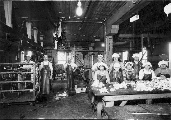 meat packing industry